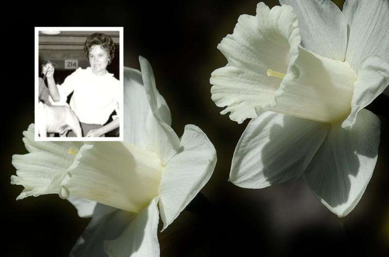 Ann Irene Davis Crowell