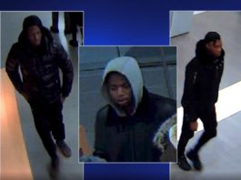 Shoplifters Steal $7k of Products From Cool Springs Apple Store